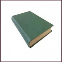 Сын тайны, роман в 2 томах, т.1