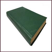 Полное собрание сочинений Надсона С.Я., т.1